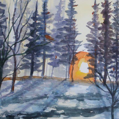 vinter quiller 2 2019